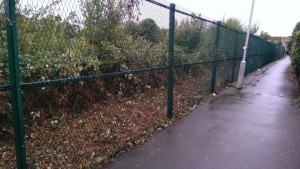 The Network Rail land alongside the alleyway, now clear of rubbish thanks to a campaign by Lynne Featherstone MP and local residents.